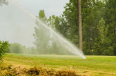 Watering green grass lawn on golf course — Photo
