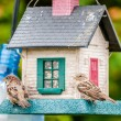Bird feeders. tree house for the birds, — Stock Photo #36437397