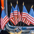 Stock Photo: Five mini american flags