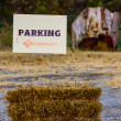 Stock Photo: Parking direction sign on farm