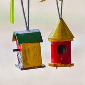 Casinhas de pássaros coloridos — Fotografia Stock