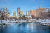 Charlotte north carolina marshall park in winter — Stockfoto