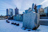 Rare winter scenery around charlotte north carolina — Stock Photo