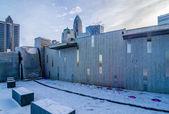 Rare winter scenery around charlotte north carolina — Stockfoto