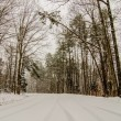 Snow covered road and trees after winter storm — Stock Photo #43354091