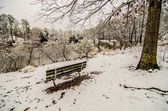Park bench in the snow covered park overlooking lake — Stock Photo