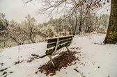 Göle bakan park park bankında kar kaplı — Stok fotoğraf
