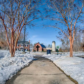 Snow around billy graham library after winter storm — Stock Photo