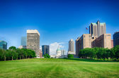Saint louis skyline on a sunny day with blue sky — Stock Photo