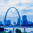 Постер, плакат: City of St Louis skyline Image of St Louis downtown with Gate