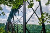 западная вирджиния нью-ривер ущелье мост перевозящих нас 19 — Стоковое фото