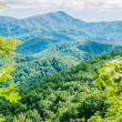 Great Smoky Mountains National Park near Gatlinburg, Tennessee. — Stock Photo #50207667