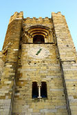 Detalle de la fachada de la catedral de lisboa, portugal — Foto de Stock