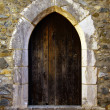Detail of a castle door at Portugal - Stock fotografie