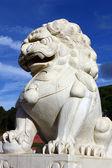 Chinese Lion — Stock Photo