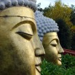 Stock Photo: BuddhStatue