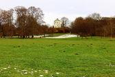 Englisher Garten, Munich, Germany — Stock Photo