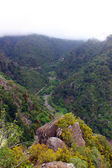 Pico, isla de madeira, portugal — Foto de Stock