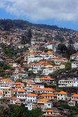 Funchal, isla de madeira, portugal — Foto de Stock