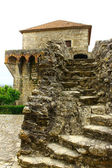 Castillo, porto de mós, portugal — Foto de Stock