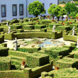 Garden, Castelo Branco, Portugal — Stock Photo