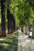 Liberty Avenue, Lisbon, Portugal — Stock Photo