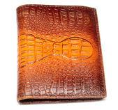 Peněženka z pravé krokodýlí kůže — Stock fotografie