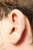 Young man's ear — Stock Photo