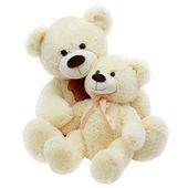 Dos teddybears sobre fondo blanco — Foto de Stock