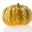 Pumpkin - Stock Photo