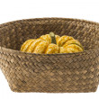 Pumpkin in basket - Stock Photo