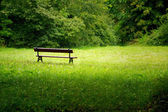 Old park and bench — Stock Photo