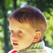 Cheerful little boy. Close-up portrait — Stock Photo