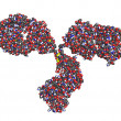 Antibody structure - Stock Photo