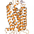 Stock Photo: Rhodopsin protein