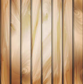 Wall panels with wood detailed texture. — Stock Vector