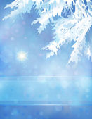 Christmas background with Christmas tree branches and Star — Cтоковый вектор