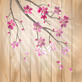 Spring cherry blossom flowers on a wood texture. Floral artistic vector design with beautiful pink cherry (plum) blooming flowers, tree branch, fall petals, sun rays, light effect on a wooden fence — Cтоковый вектор