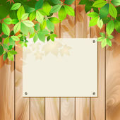 Green leaves on a wood texture. Vector spring or summer environmental background with tree branches, sunlight coming through the leaves, drop shadow on a wall, wooden textured fence, blank sign board — Vettoriale Stock