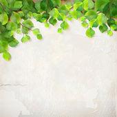 Vecteur arbre branche feuilles plâtre mur fond — Vecteur