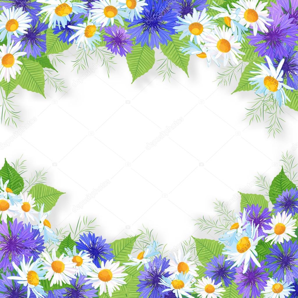 Рамка с полевыми цветами фото