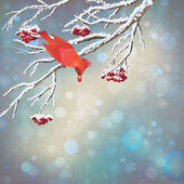 Christmas Vector Snowy Rowan Berries Bird Card — Stock Vector