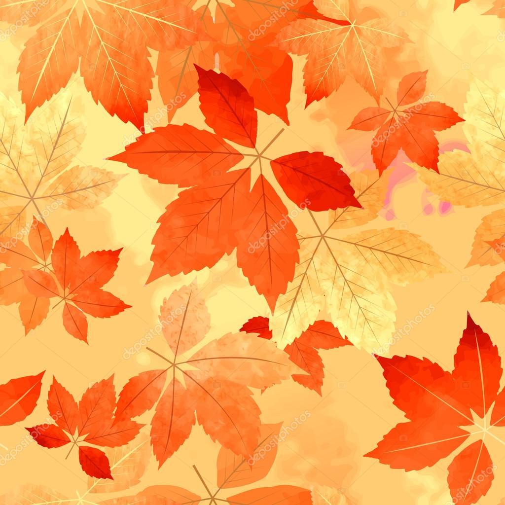 Feuille d 39 automne sans couture automne mod le image - Image feuille automne ...