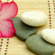 Stock Photo: River stones and frangipani
