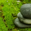 Balanced stone on algae — Stock Photo
