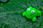 Little greenly frog toy — Stock Photo