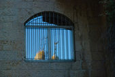 Crescent moon in window of Jewish house in Jerusalem — Stock Photo