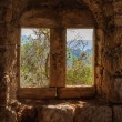 View of trees and mountains through antique window on old stone — Stock Photo