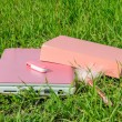 Pink laptop, book, pen and disk on key on green grass — Stock Photo #41851311