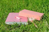 Pink laptop, book, pen and disk on key on green grass — Стоковое фото